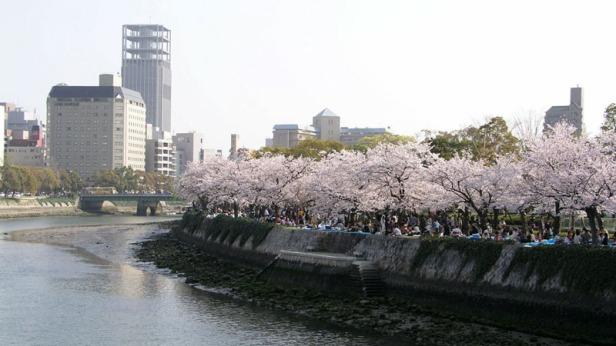 Hanami-Hiroshima1